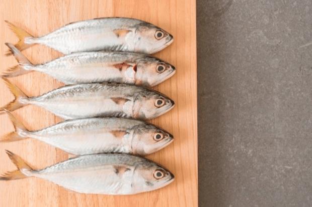 alimentacao-cuidado-com-os-peixes-criados-em-cativeiro-2