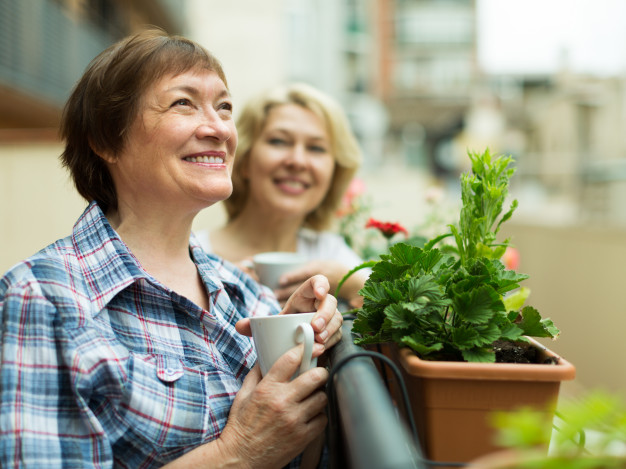 conheca-sete-alimentos-que-aliviam-os-sintomas-da-menopausa